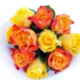 Bouquet-roses-anniversaire