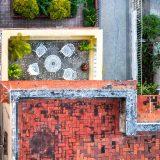 La Havane, petites cultures en terrasses, Vedado-Cuba