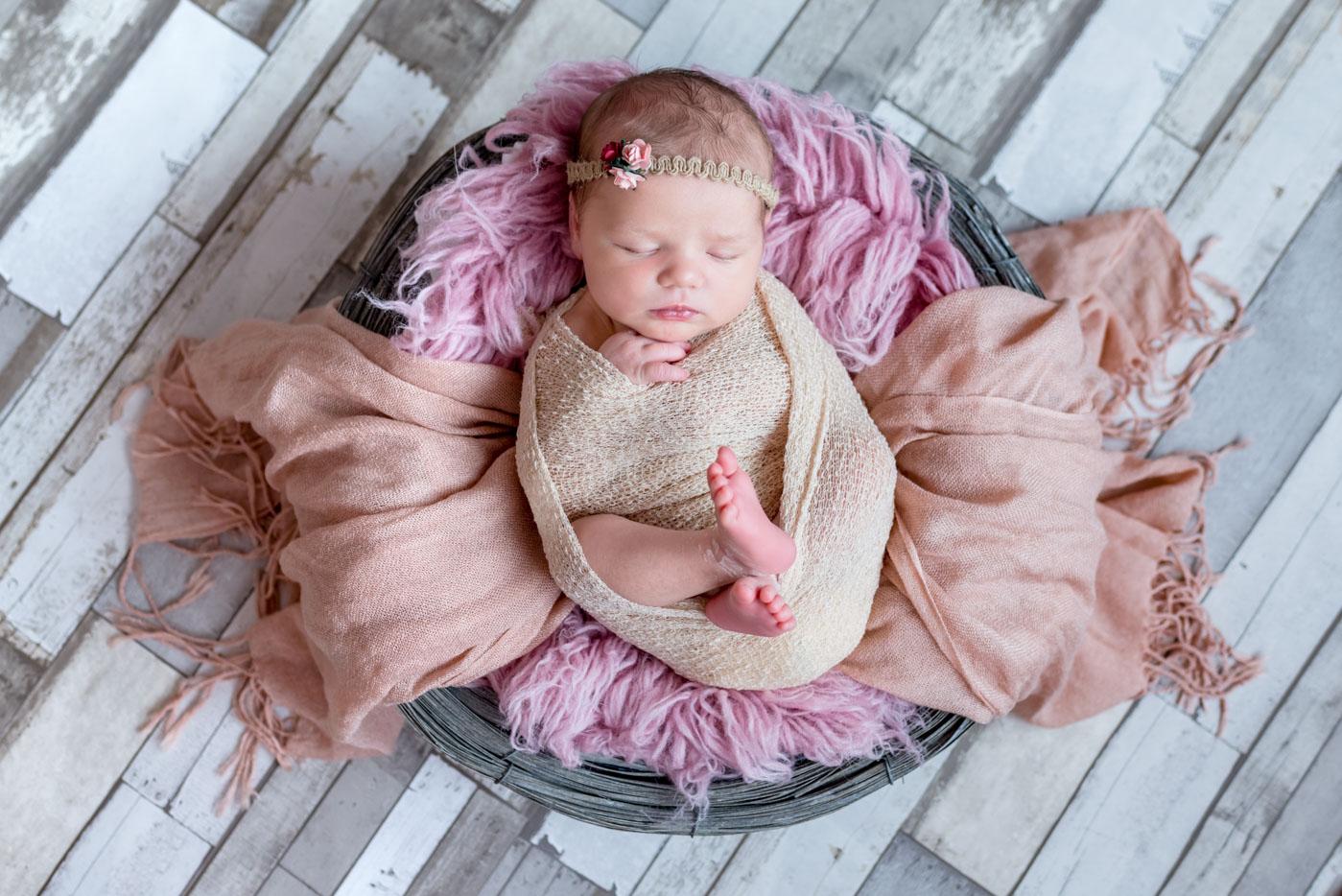 Shanone naissance 22.07.17 1400px--1