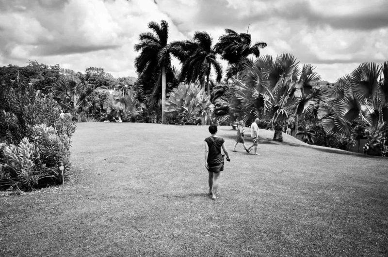 Martinique 2016 site 1400px-0583